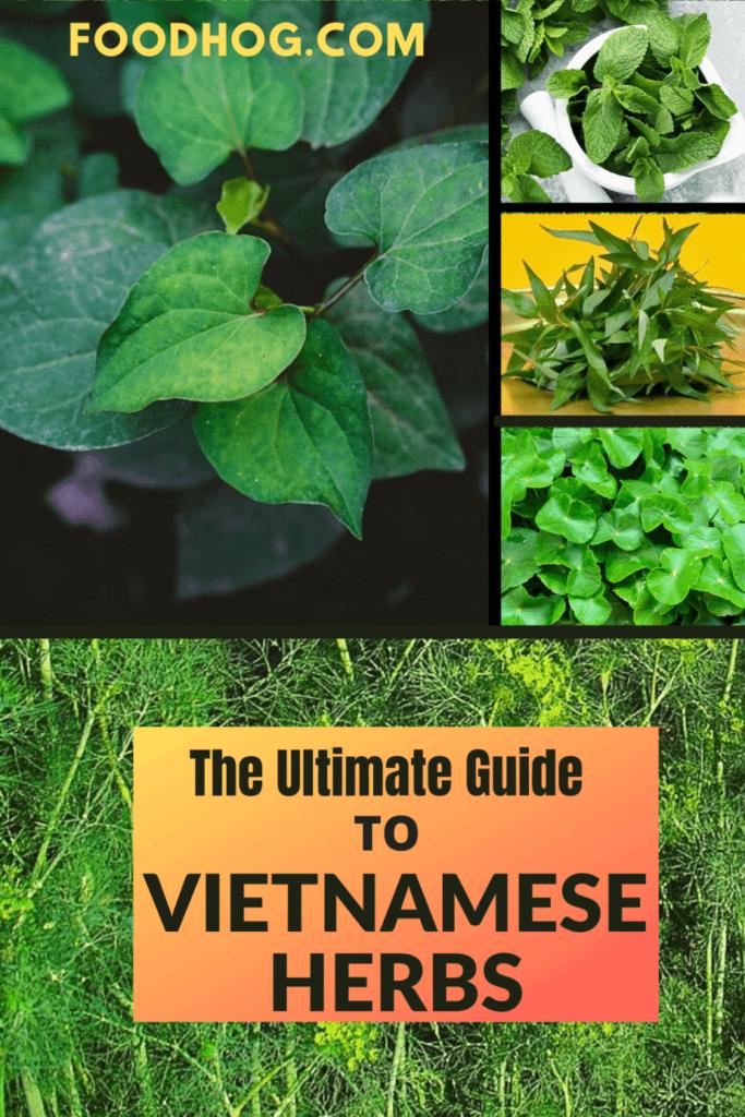 vietnamese herbs