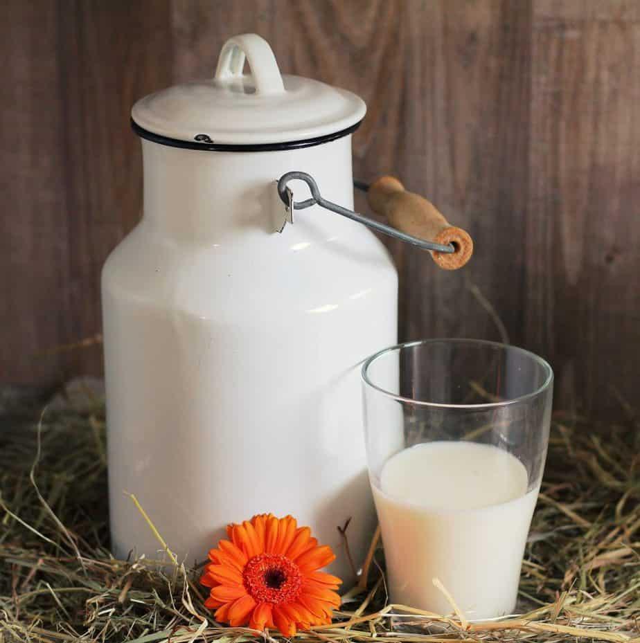 kiselo mleko