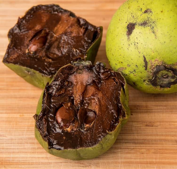 black sapote exotic fruits
