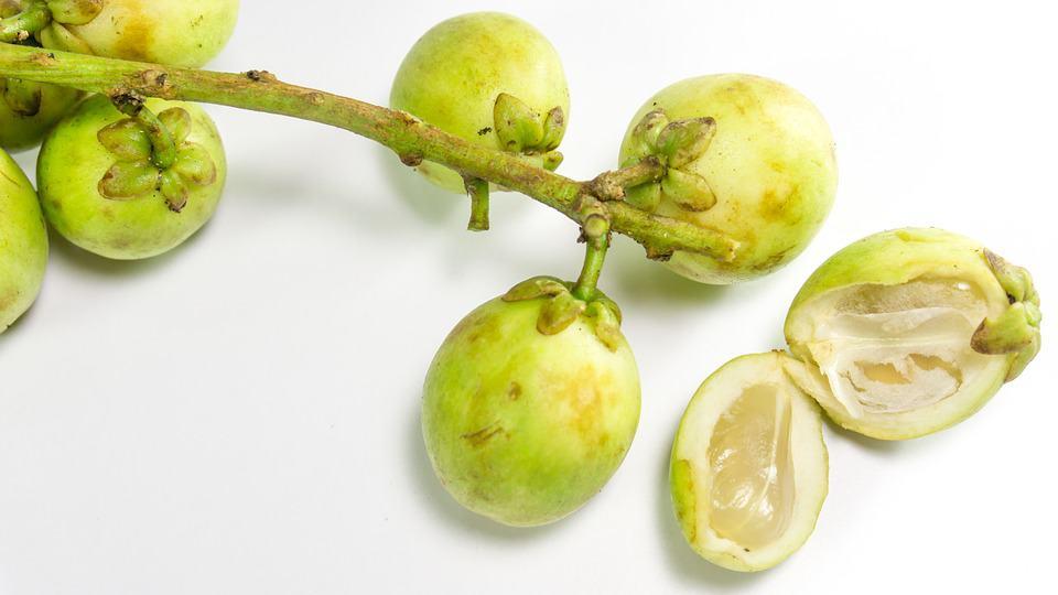 langsat weird exotic fruits
