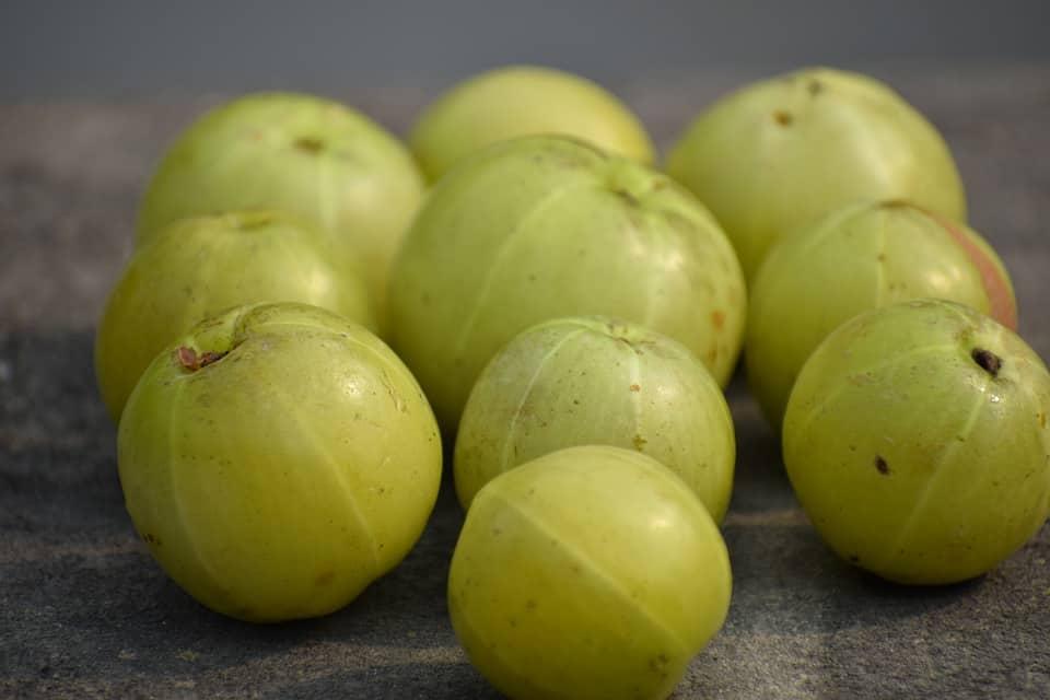 amla exotic fruits