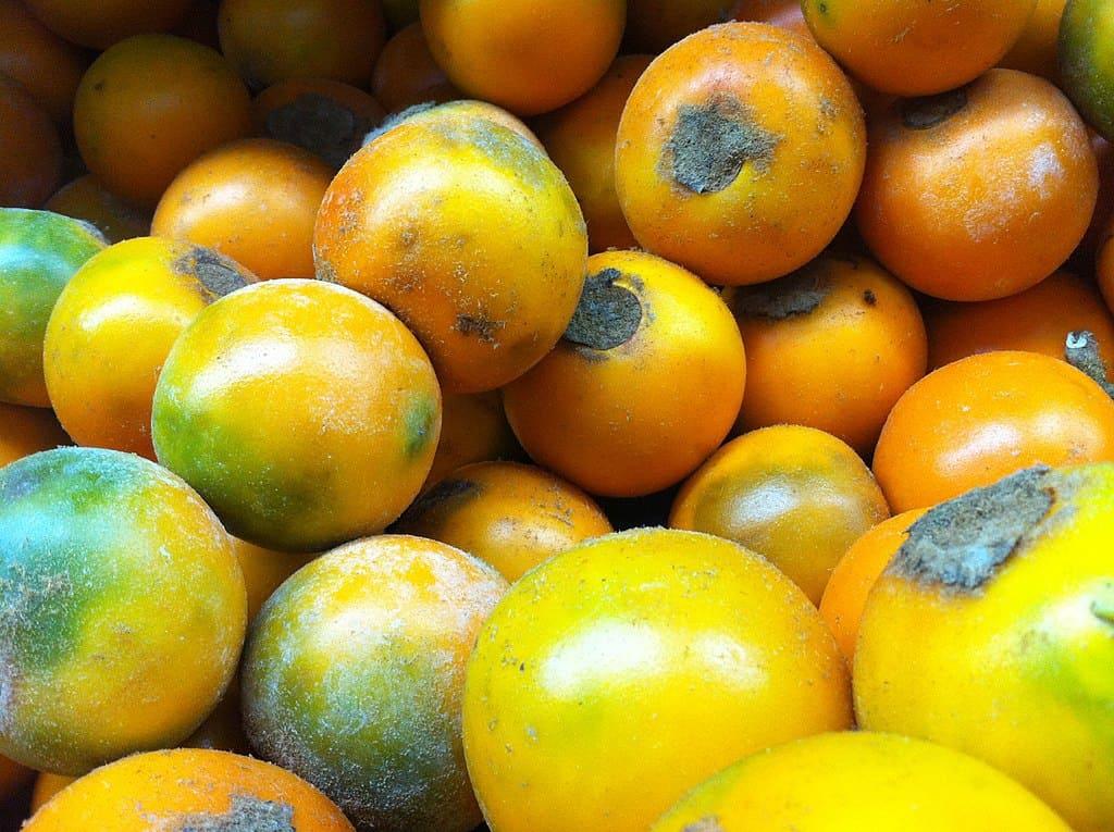 lulo fruit market