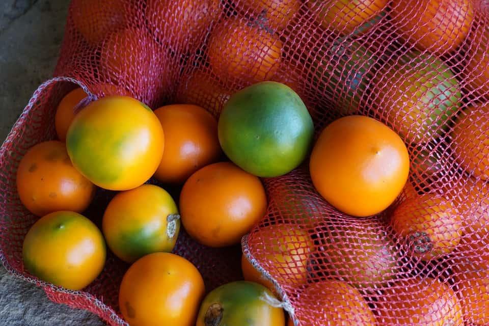 lulo fruit varieties